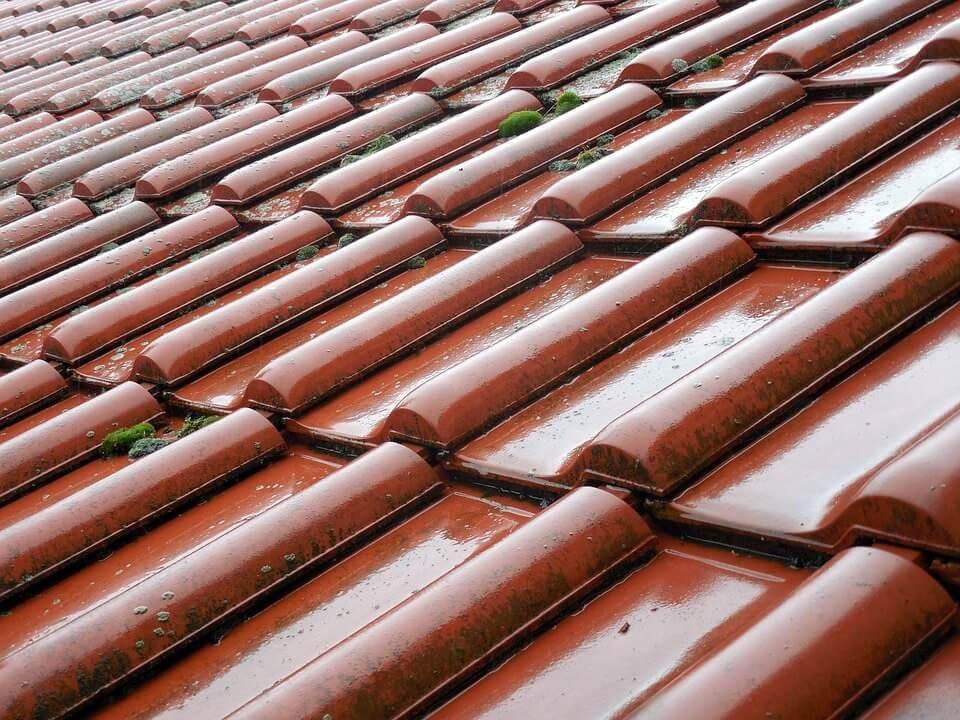 David Alpa telhado-molhado